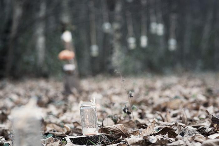 bosque-97